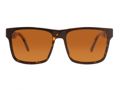 Bronx - Tortoise Brown